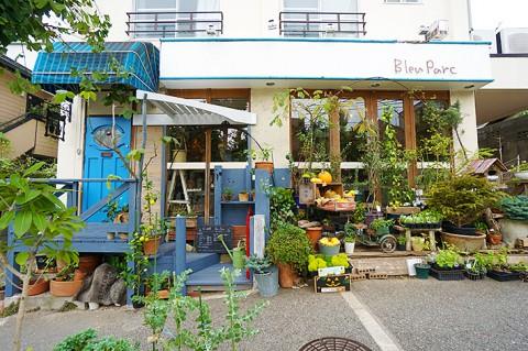 Blue Parc